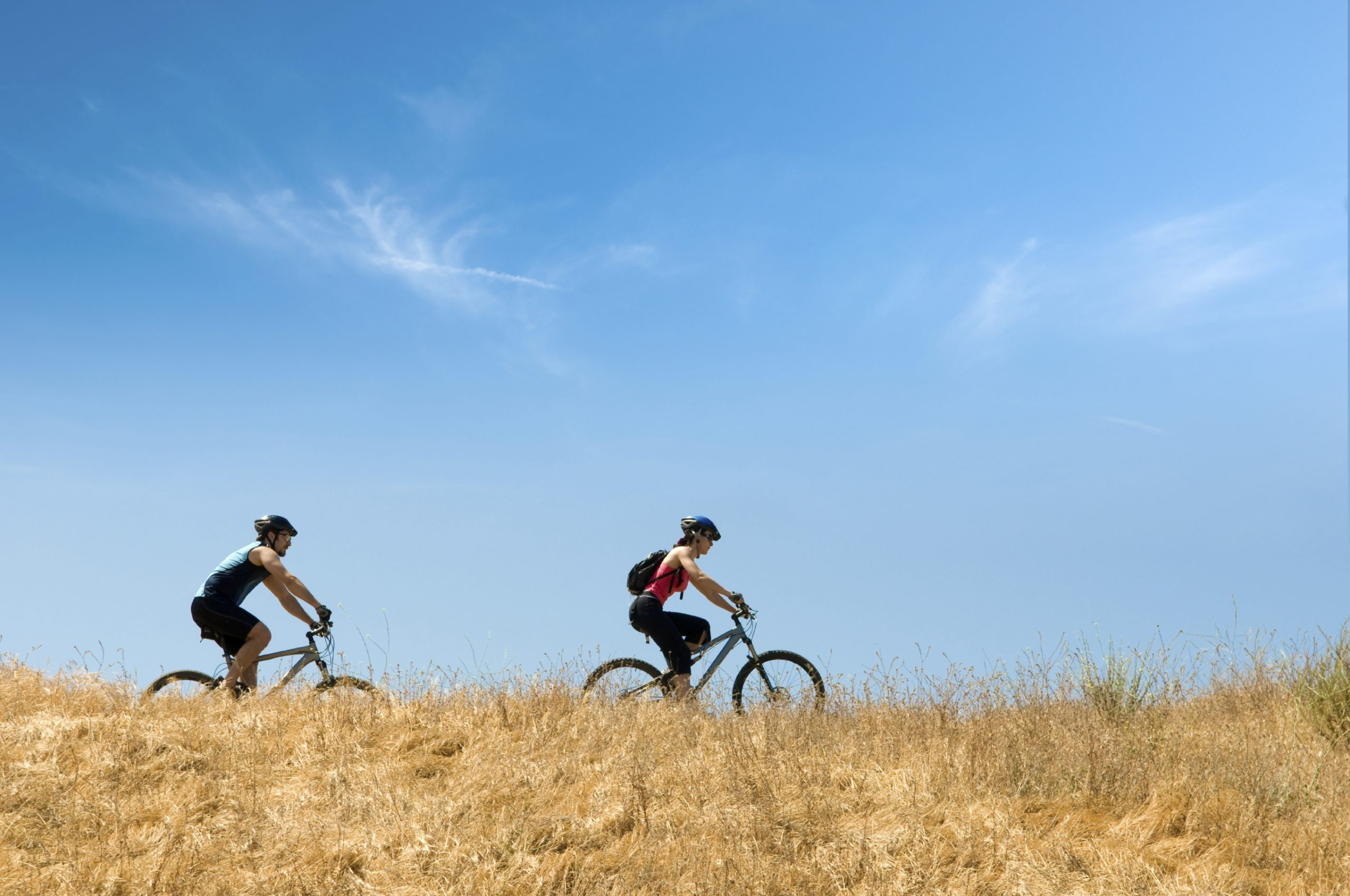 Two cyclists riding on a path